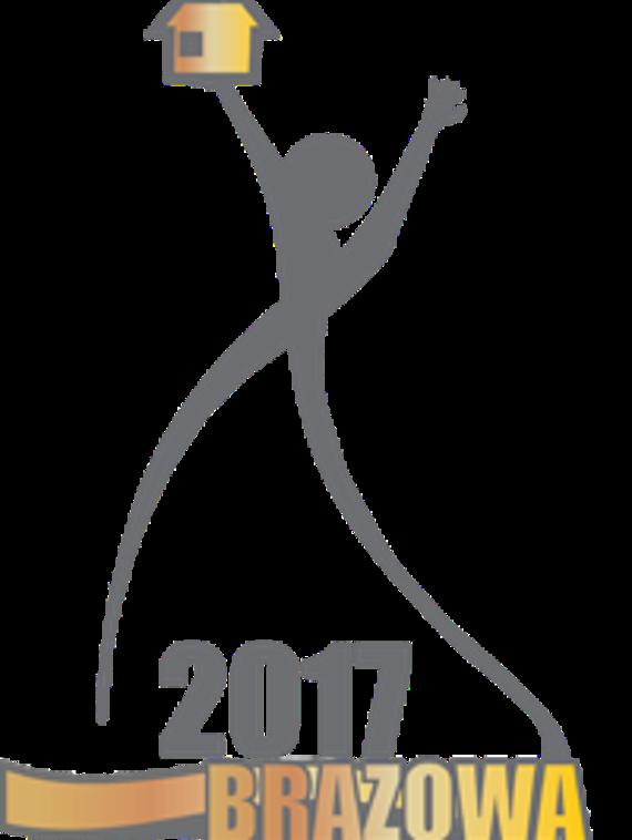 Brązowa Budowlana Marka Roku 2017